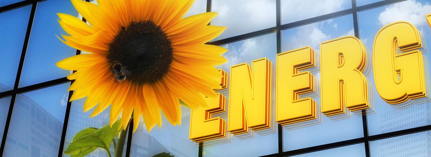 Energieberatung